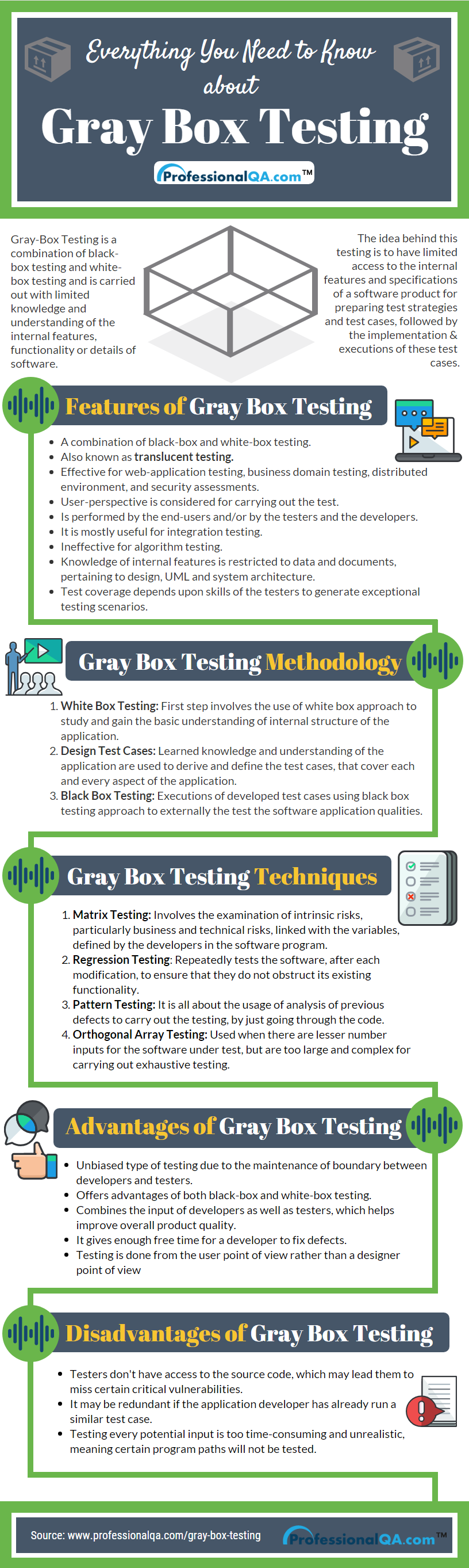 Gray Box Testing Infographics