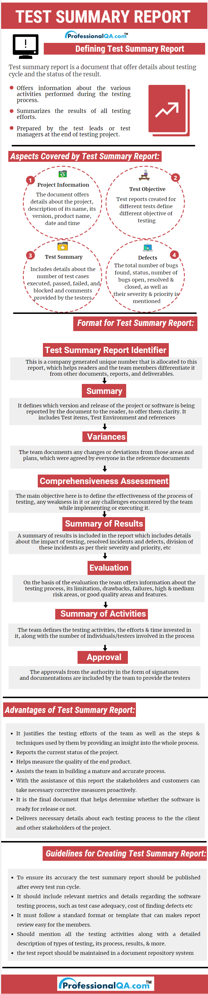 Test Summary Report Infographics