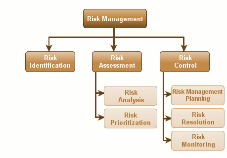 risk management activity