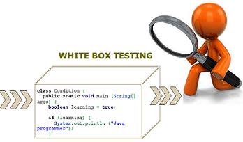 White Box Testing Types Differences Levels Tools Professionalqa Com